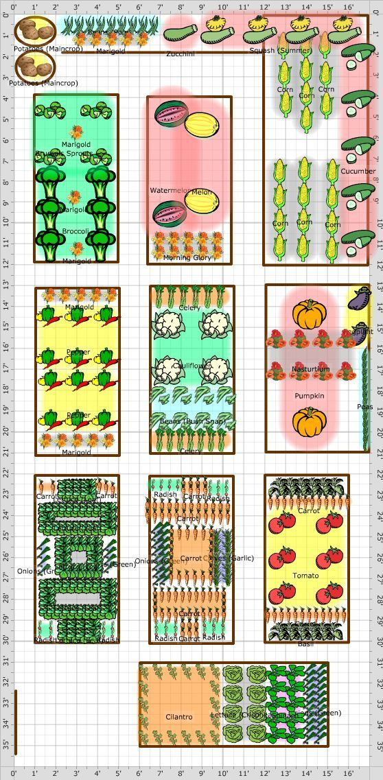 Garden layout companion gardening pinterest for Vegetable planting layout