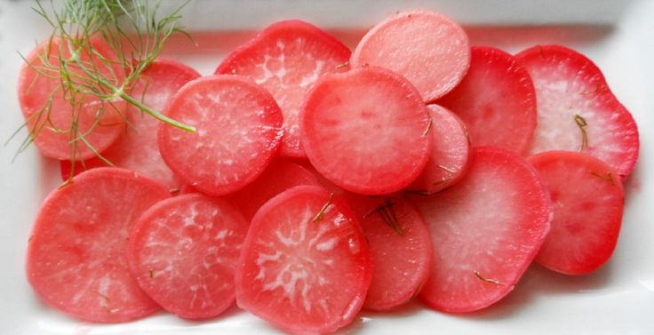 Pickled radishes - easy to make, great tasting and use in place of ...