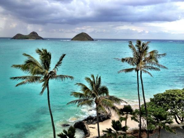 Nina Dobrev's Hawaii Picture
