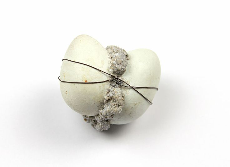 Anja Eichler - Safe and Sound  quail eggs, light concrete, concrete, resin, iron wire, silver