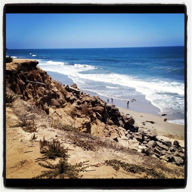 California dog beach