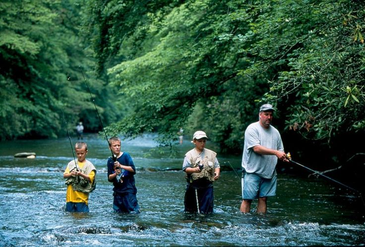 Pin by harry han on outdoors pinterest for Davidson river fishing report