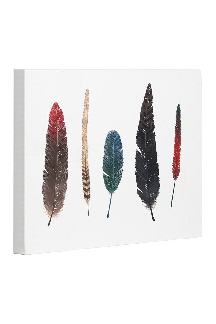 Feathers 2 Canvas