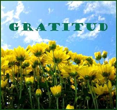 Dar gracias por los alimentos -- una bella costumbre familiar.  // Saying grace -- a beautiful family practice.