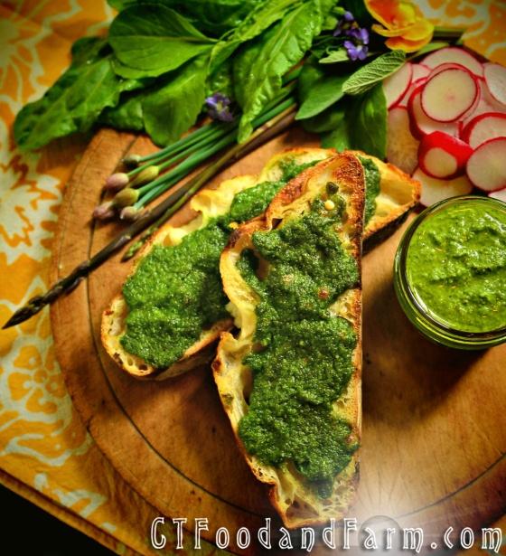 Spring Tonic: Ramp Pesto   I SHOULD eat this....   Pinterest