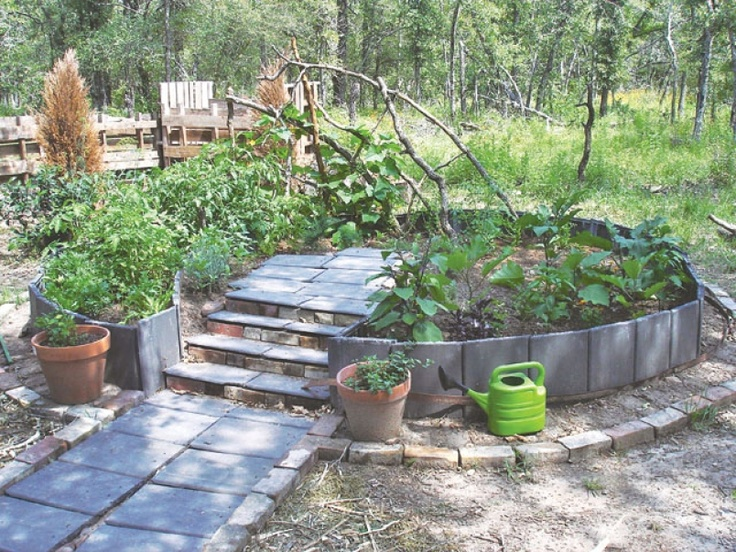 raised paper and mulch vegetable garden vegetable