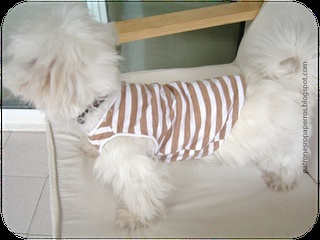 Patrones de ropa para perros: Patrón de camiseta para perro