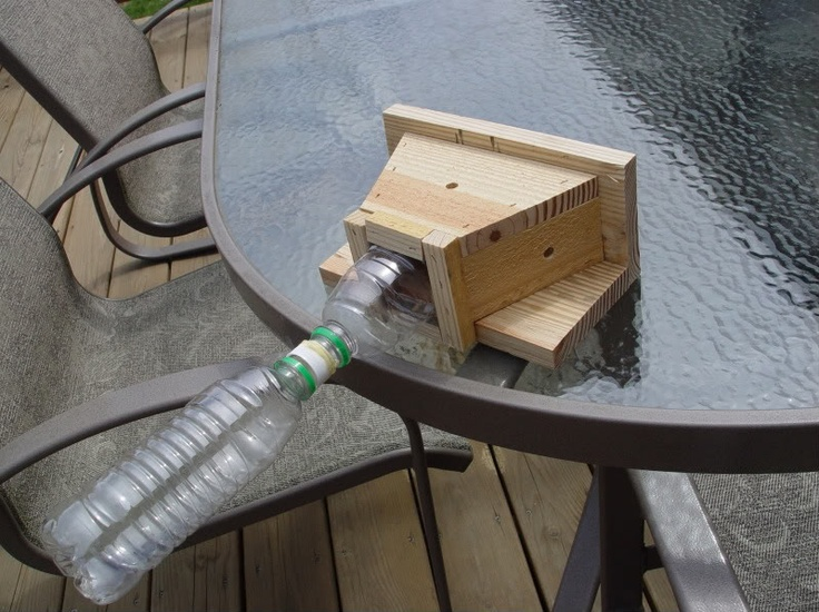 Carpenter Bee Trap Outdoors And Exterior Pinterest