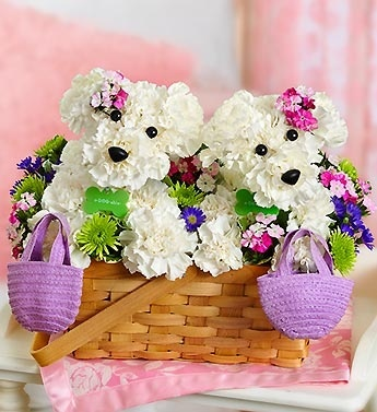1800flowers dogs