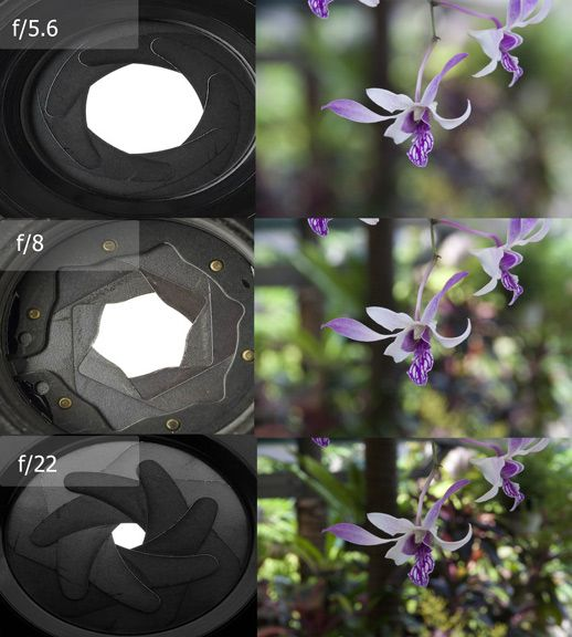 Moving Toward Manual Settings Understanding Aperture a