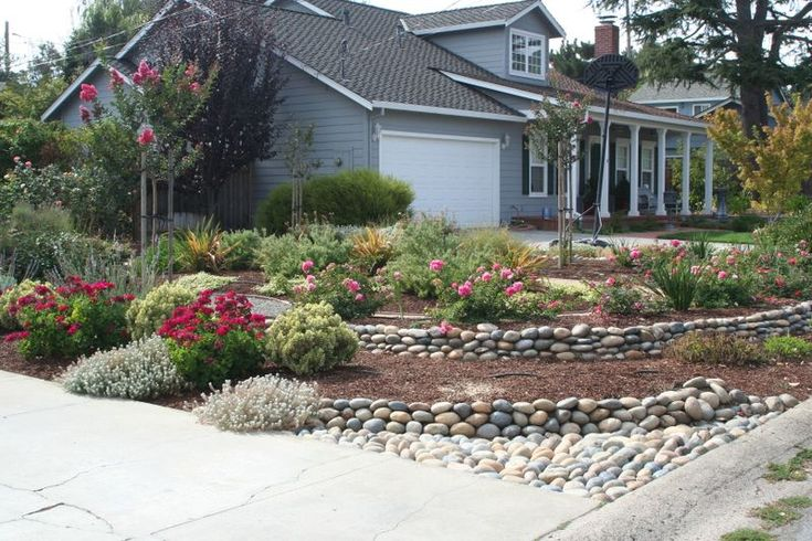 love the rocks and drought resistant plants gardening
