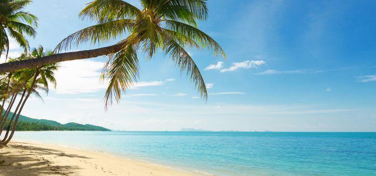kailua hawaii | Novelty Items in Kailua Kona, Hawaii