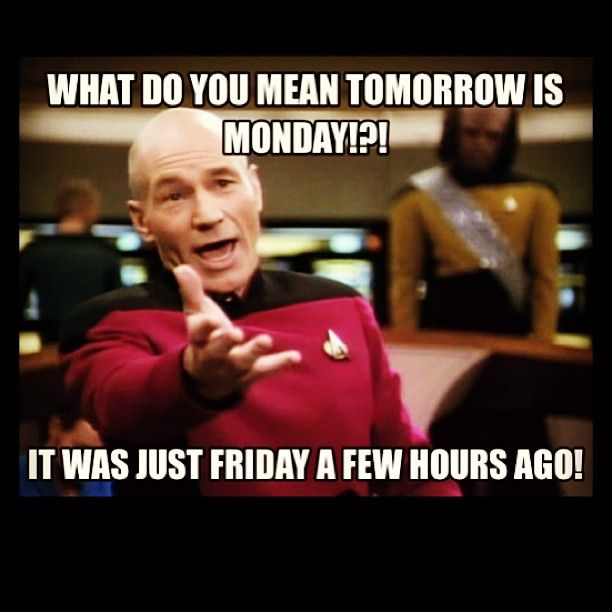 Funny Tomorrow Is Monday Meme : Quot what do you mean tomorrow is monday humor pinterest