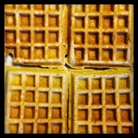 Waffles!! (Super healthy!! & Gluten Free!) made with cornmeal, oat ...