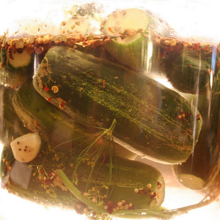 Spicy Refrigerator Dill Pickles Recipe | Food | Pinterest