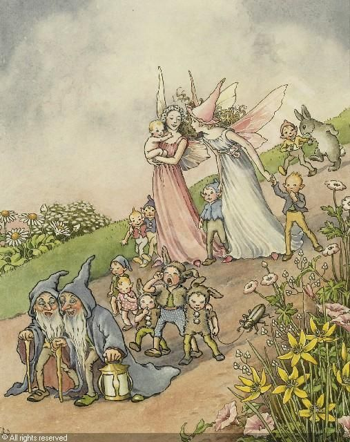 Fairies and Elves
