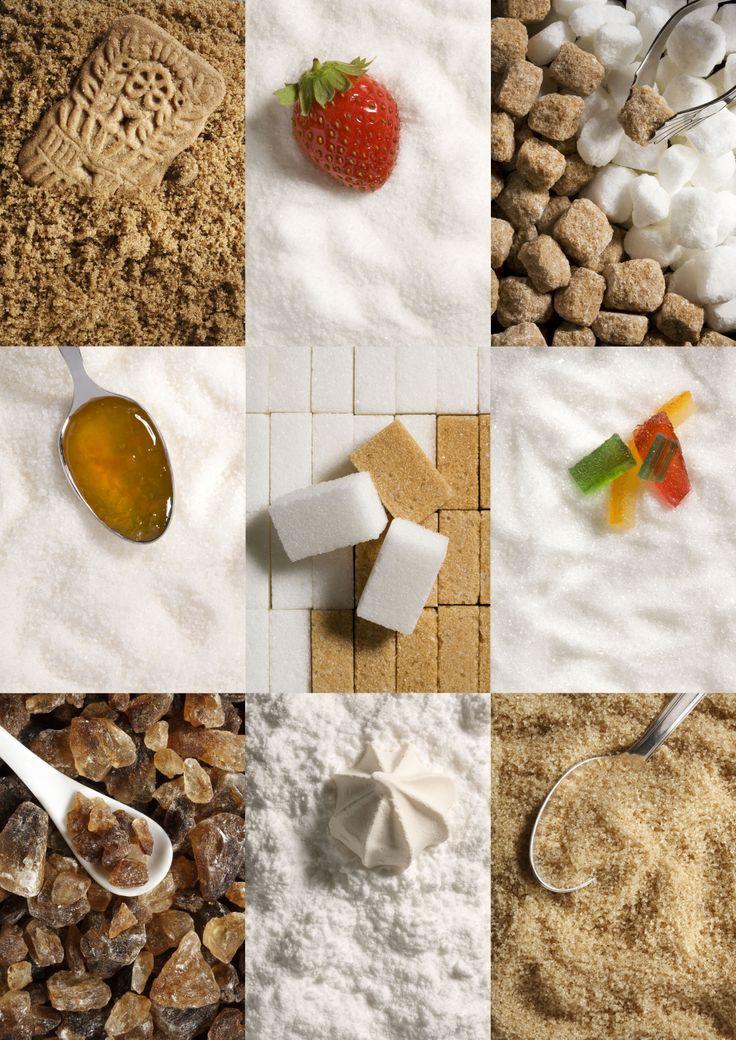 Les différentes sortes de sucre M.Gibert/CEDUS