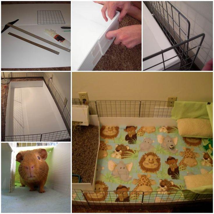 Cc guinea pig cages diy for Homemade guinea pig