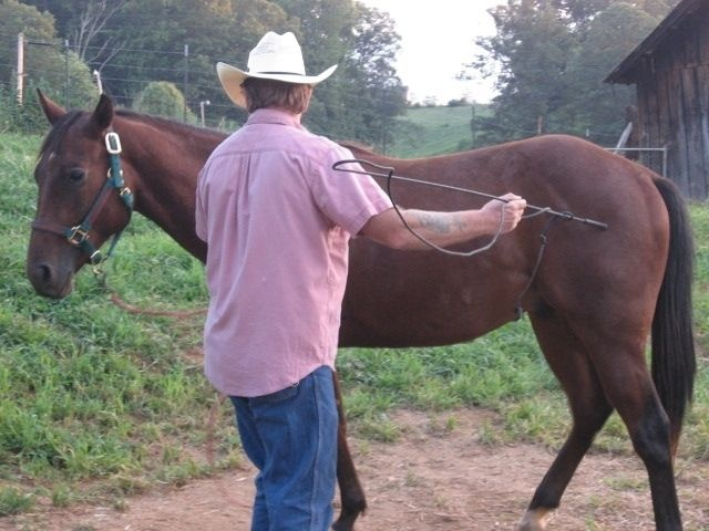 Working with our horse, Colonel. My husband is also a Certified ESMT in WNC