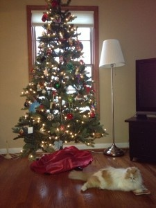 Christmas tree quot the real lyrics by the cat