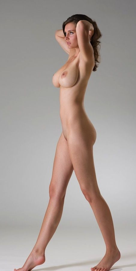 All not Figure drawing models female nude reference have