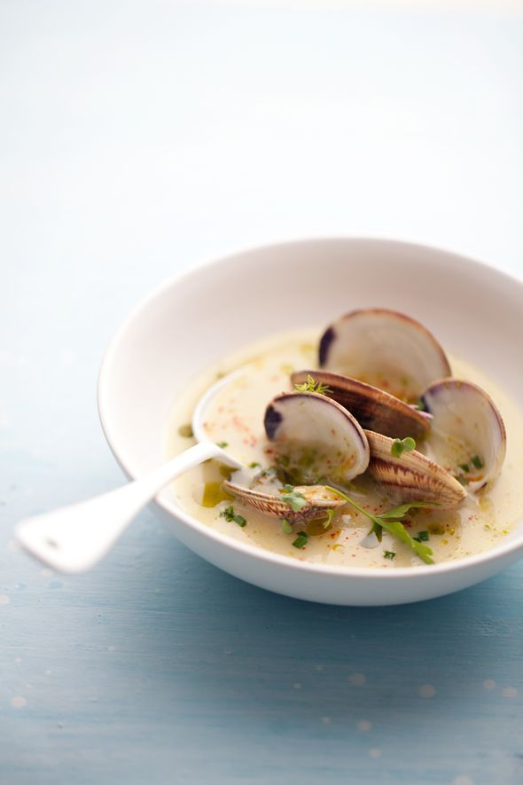 Clams in a light fennel and shallot broth.