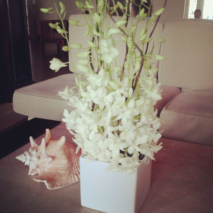 White dendrobium orchid centerpiece imgkid the