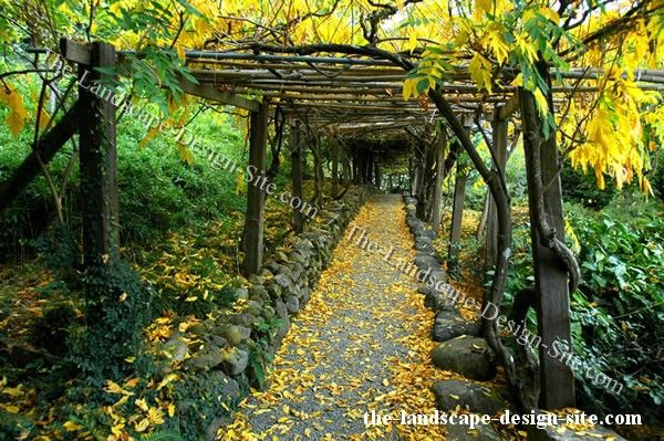 Pin by ang on backyard dreams pinterest for Woodland garden design