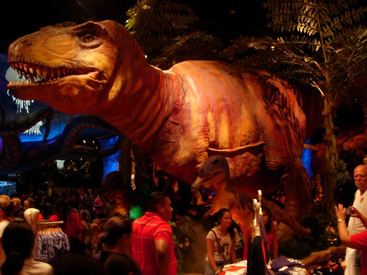 Inside t rex restaurant my favorite place to vacation for Restaurant t rex