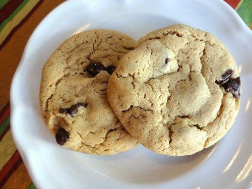 Snappy Turtle Cookies Recipes — Dishmaps