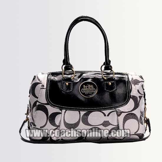 Coach Fall Fashionable Handbags