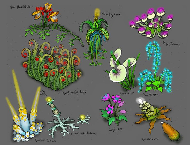 Luminescent plants the radix endeavor pinterest