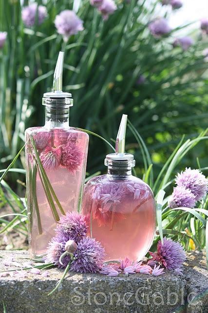 StoneGable Tutorial on How to Make Chive Blossom Vinegar.