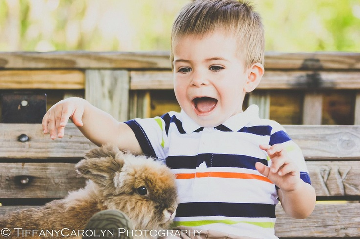 Easter bunny pic photography pinterest