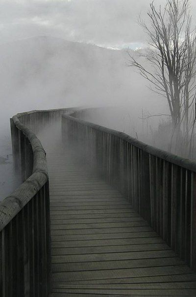 This looks like it would be a good bridge to add to my 'I wonder where this path goes' board.