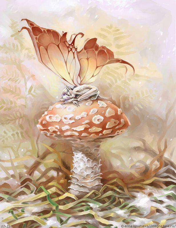 Sleeping butterfly by anna ignatieva