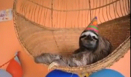 Sloth in party hat - photo#7