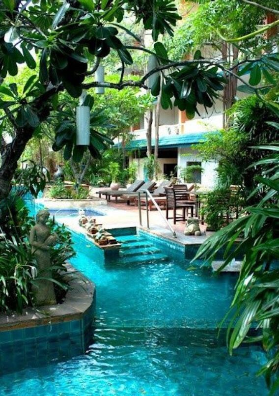 Amazing Backyards With Pools The Image