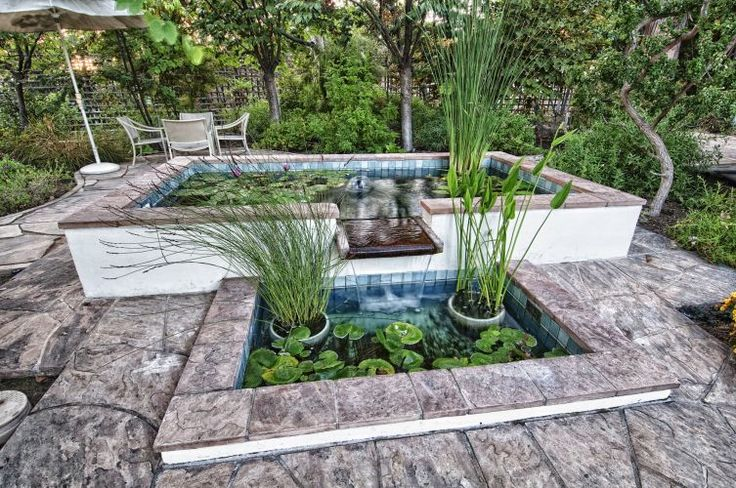 Pin by raj qsar on orange county real estate pinterest for Salt in koi pond