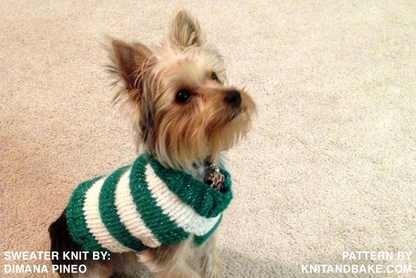 Free Knitted Dog Sweater Patterns : Pin by on knitting Pinterest