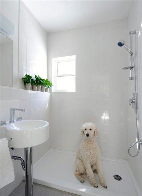 Open Shower Ideas For J Pinterest