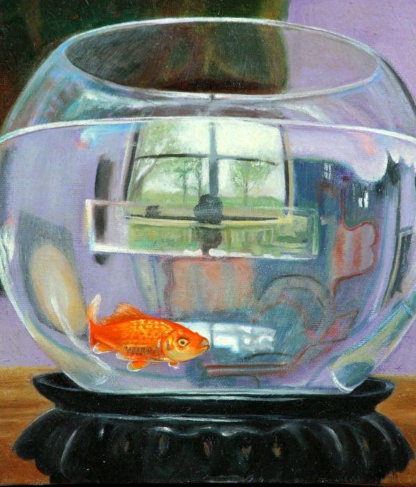 Fish bowl fine art pinterest for Fish bowl fish