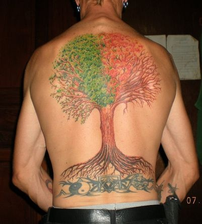 zen tree tattooZen Tree Tattoo