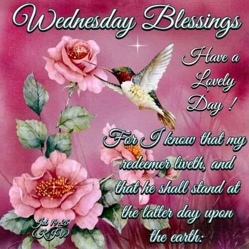 Good Morning Wednesday Blessings Images : Wednesday blessings quotes quotesgram