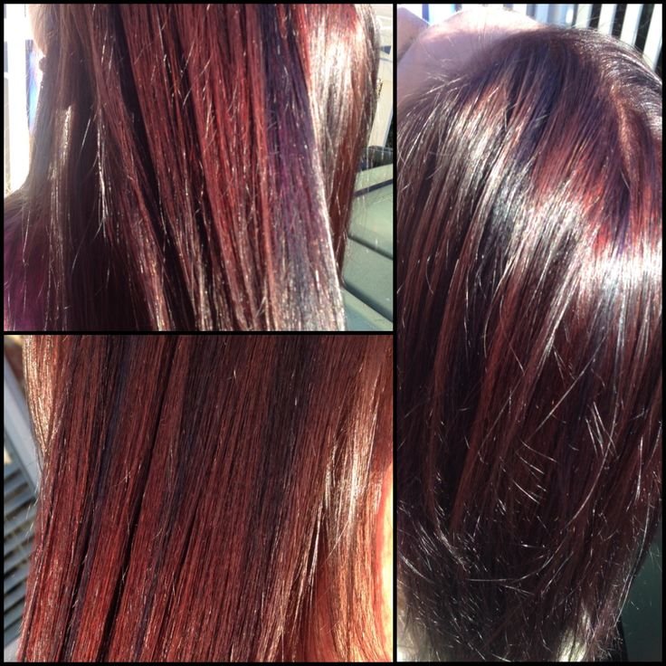 burgundy plum hair color with highlights Car Tuning