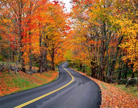 Winding road.