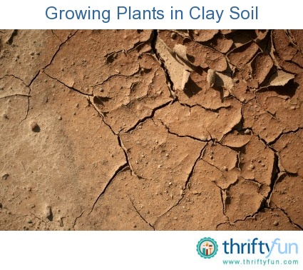 Pin by uta christina on garden pinterest for Soil and its types