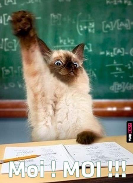 Cest le rôle essentiel du professeur déveiller la joie de travailler et de connaître ~ A. Einstein