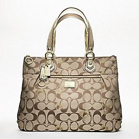 discount Swoon, Coach bag! online store