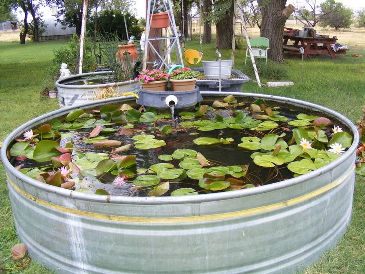 Pond decorations moestuin pinterest for Fish pond decorations